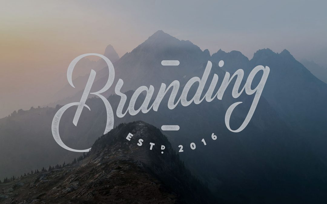 Branding & Vectorizing Process (video)